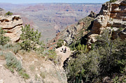 South Kaibab Trail Prints - Looking Down on the South Kaibab Trail Print by Julie Niemela