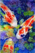 Koi Painting Posters - Looking For Lunch Poster by Ann  Nicholson