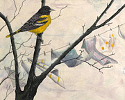 Oriole Mixed Media Prints - Looking for Nesting Material Print by Sandy Clift