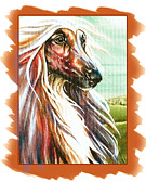 Afghan Hound Paintings - Looking into the distance by Lynne Watson