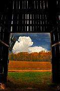 Barn Digital Art - Looking Out by Lois Bryan
