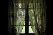 Log Cabins Photos - Looking Out The Window Of A Log Cabin by Todd Gipstein