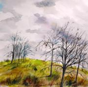 Autumn Trees Drawings Prints - Looking Past to the Changing Sky Print by John  Williams