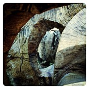 Instagroove Art - Looking Through by Natasha Marco