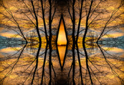 Sunsets Prints Framed Prints - Looking Through The Trees Abstract Fine Art Framed Print by James Bo Insogna