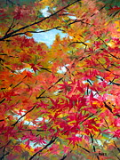 """fall Foliage"" Paintings - Looking Up II by Pete Maier"