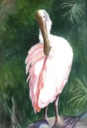 Spoonbill Paintings - Lookn Back - Spoonbill by Roxanne Tobaison