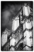 French Gothic Architecture Posters - Lookout from Notre Dame Poster by John Rizzuto