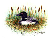 Loon Paintings - Loon and Baby Judy Filarecki Watercolor by Judy Filarecki