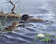 Loon Paintings - Loons and Dragonfly by Sharon Molinaro