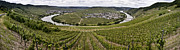 Viticulture Prints - Loop of the Moselle Print by Heiko Koehrer-Wagner