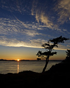 Art_photography Framed Prints - Lopez Island Sunset Framed Print by Tony Locke