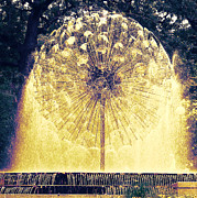 Loring Fountain Print by Rashelle Brown
