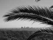 Santa Monica Posters - Los Angeles Skyline From Hollywood Hills Poster by Mike Shaffer