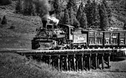 Steam Train Prints Art - Los Pinos Bridge and Cattle Train Black and White by Ken Smith