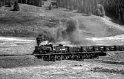 Steam Train Prints Art - Los Pinos Cattle Train Black and White by Ken Smith