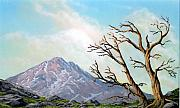 Pacific Crest Trail Paintings - Lost Battle by Frank Wilson