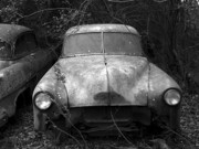 Antique Auto Originals - Lost Chevy by Arni Katz
