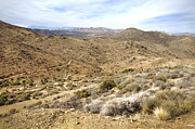 Southern California Photo Originals - Lost Horse Mine Trail 2 by Jessica Velasco