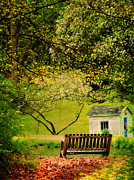 Connecticut Landscape Metal Prints - Lost in My Thoughts - Still Life Metal Print by Thomas Schoeller
