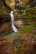 Arkansas Metal Prints - Lost Valley Falls Metal Print by Ryan Heffron