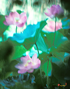 Nature Study Photo Prints - Lotus--Ethereal Impressions ii 20A1 Print by Gerry Gantt