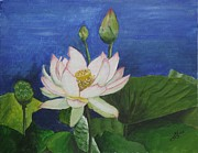 Lotus Pond Paintings - Lotus Flower by Kim Selig