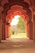 Lotus Mahal Print by Jon Anderson