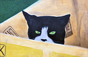 Black And White Cats Pastels - Louie In The Box by Jan Amiss