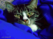 Cat Paw Digital Art Posters - Louis and the Snuggy Poster by Joan  Minchak