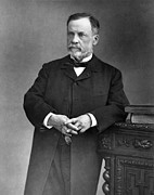 Breakthrough Framed Prints - Louis Pasteur, French Chemist Framed Print by Omikron