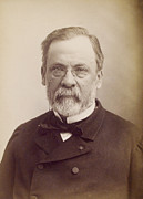 Sour Art - Louis Pasteur, French Microbiologist by Humanities And Social Sciences Librarynew York Public Library