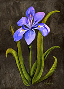 Slate Paintings - Louisiana Iris by Elaine Hodges