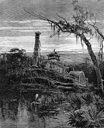 Louisiana Heron Prints - Louisiana: Steamboat Wreck Print by Granger