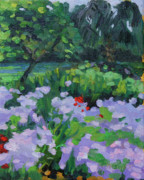 Phlox Painting Framed Prints - Louisiana Wild Phlox Framed Print by Barbara Benedict Jones