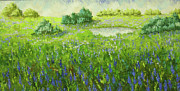 South Of France Painting Originals - Loumarin South of France wild lavender by Frederic Payet
