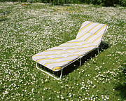 Lounge Chair Framed Prints - Lounge Chair In Meadow Framed Print by Jupiterimages