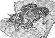 Pinscher Drawings Posters - Lounge Lizards - Doberman Pinscher Dog Art Print Poster by Kelli Swan