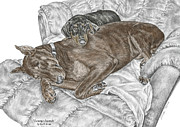 Pinscher Drawings Posters - Lounge Lizards - Doberman Pinscher Puppy Print color tinted Poster by Kelli Swan
