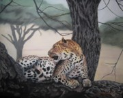 Leopard Pastels - Lounging  by John Huntsman