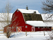 Christine Bakke - Love A Red Barn