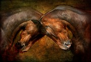 Livestock Digital Art - Love and Hate by Dorota Kudyba