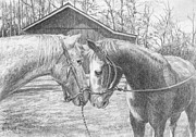 Barn Yard Drawings Prints - Love at First Sight Print by Diane Bay