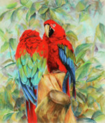 Macaw Drawings - Love birds by Usha P