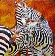 Canadian Artist Drawings Posters - Love Bite  Zebras Poster by Kelly McNeil