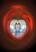 Swans Digital Art - Love by Brian Roscorla