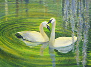Greens Framed Prints Prints - Love On Swan Lake Print by Joy Cassidy