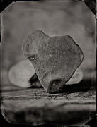 Tintype Prints - Love Rocks v1 Print by Chris Morgan