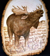 Alaska Moose Pyrography - Love Sick by Adam Owen