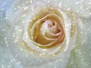 Delicate Prints - Love Spills Over Print by Shirley Sirois